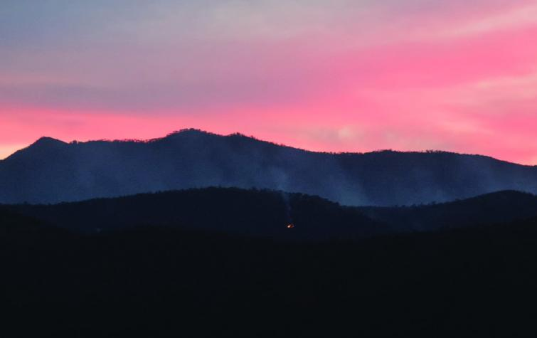 Fire managers are set to benefit from a new fire mapping tool that provides live information on soil and vegetation moisture. Photo: Marta Yebra.