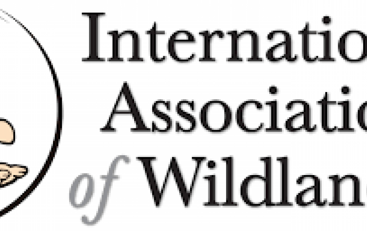 The International Association of Wildland Fire's (IAWF) 2021 student scholarship program is now accepting applications.
