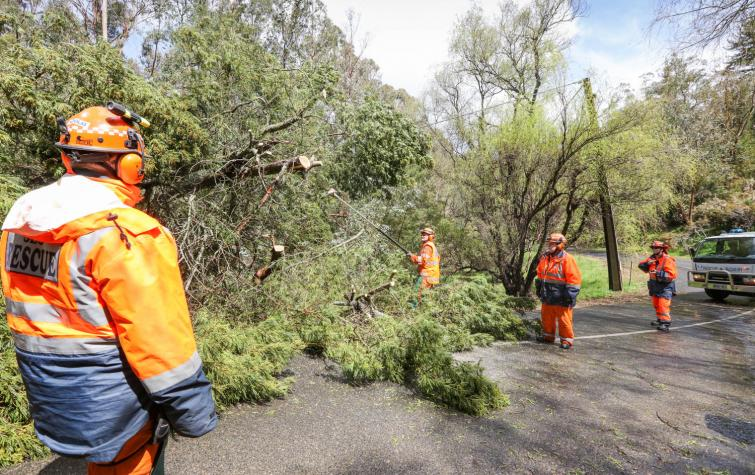 Understanding and enhancing disaster resilience in Australian communities will help to develop the capacities needed for adapting and coping with natural hazards. Photo: South Australia State Emergency Service.