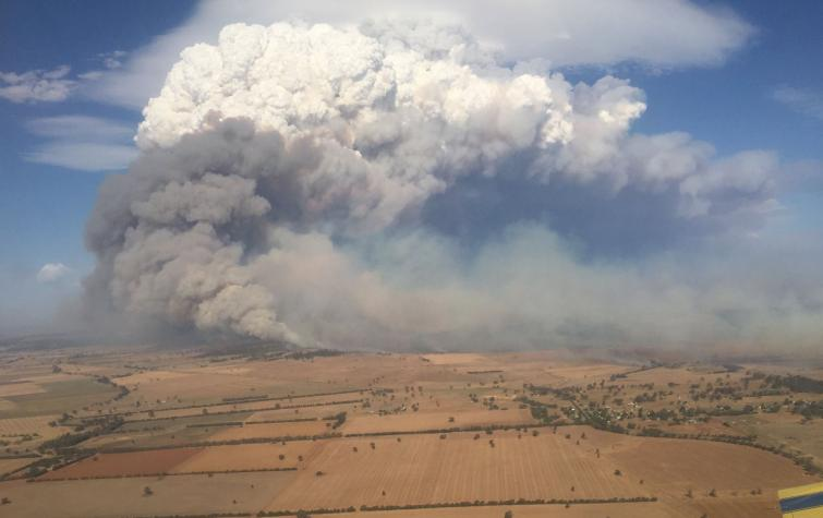 12 February 2017 was amongst the most dangerous fire conditions in NSW history.