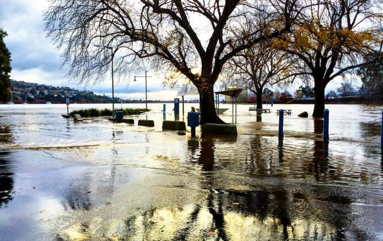 Royal Park, Launceston, during the June 2016 flood. Photo Flickr upsticksngo_crew