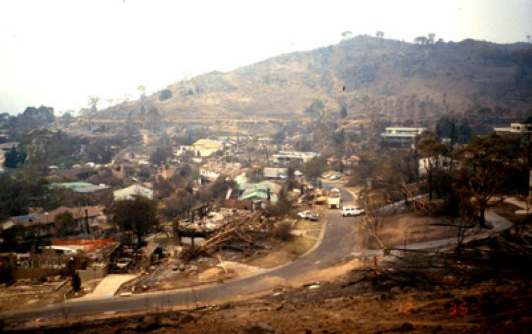 This project looks at the effects of fire on ecosystem resilience