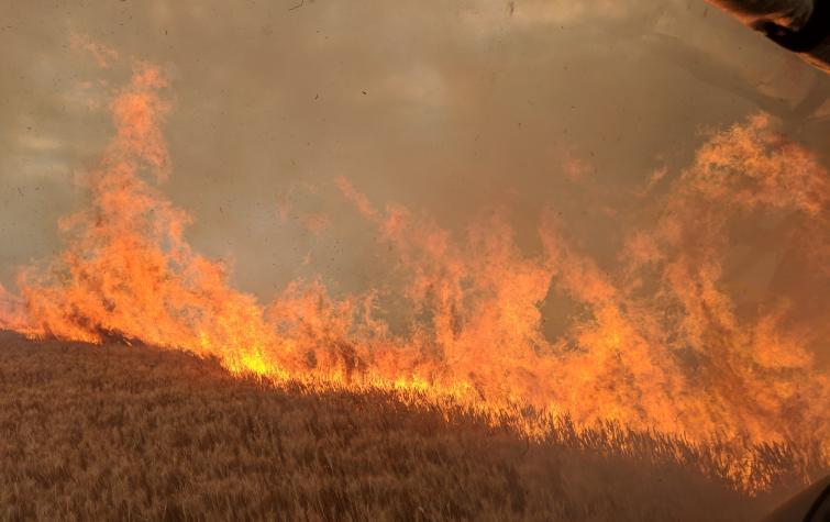 Minlaton cropfire. Photo: Stewart Germaine.
