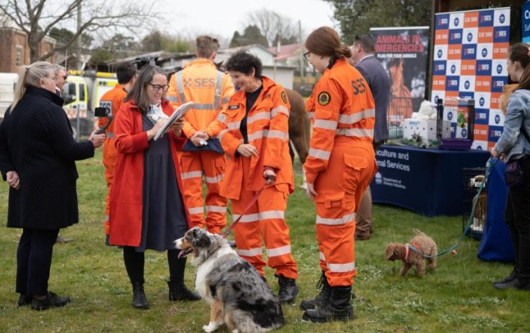 NSW SES launched their new evidence-based Get Ready Animals website in August 2020. Photo: NSW SES.