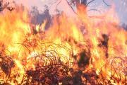 Fire in the Australian high plains