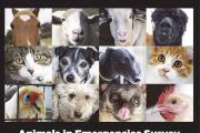 Survey for preparedness for animals in emergencies