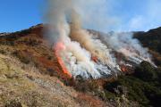 Prescribed burn - South Island, New Zealand 2014