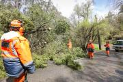 Photo: South Australia SES
