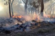 St Andrews prescribed burn