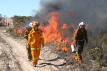 Prescribed burning at Ngarkat Conservation Park, SA.