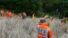 SES volunteers undertaking a search.