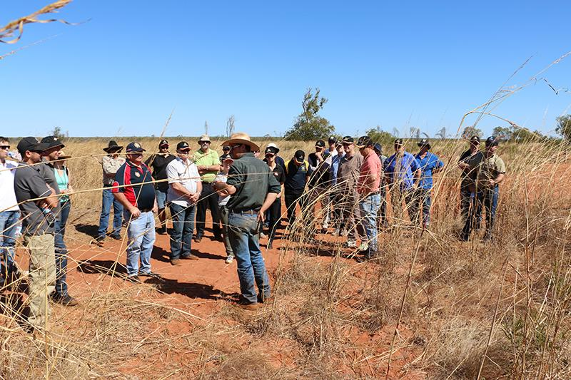 North Australia Fire Managers Forum 2014