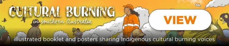 Cultural burning in south Australia