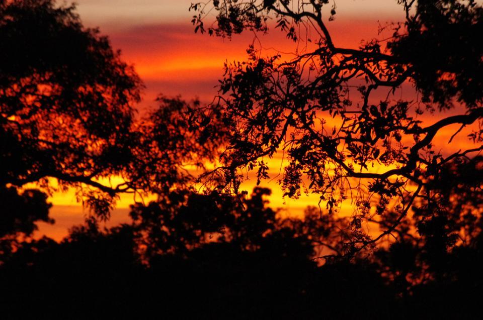 A pretty stock standard sunrise in the NT.