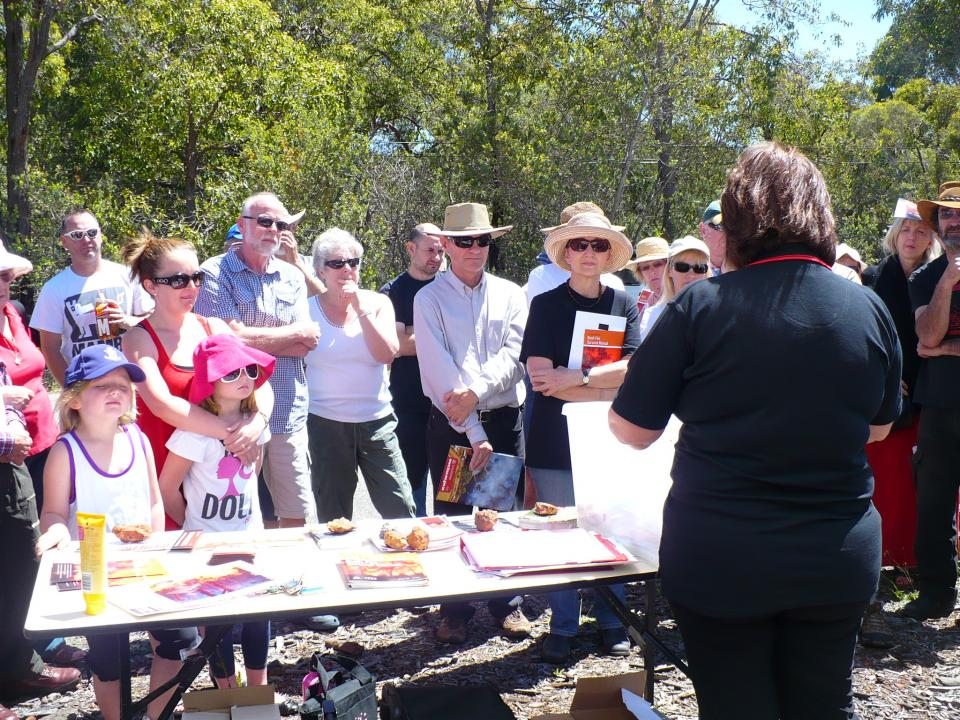 Communities planning for bushfire