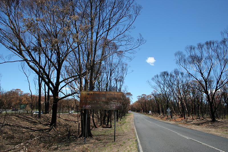 Bushfire impacts on water supplies - Bargo, NSW, 2013