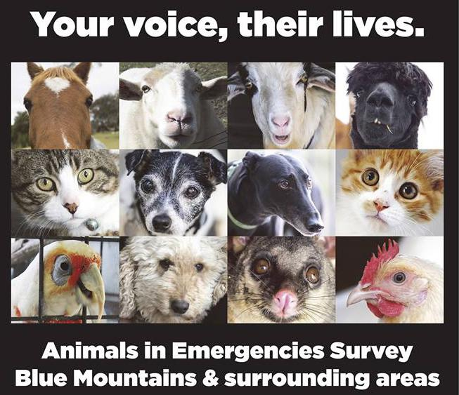 Survey for preparedness for animals in emergencies