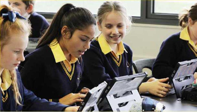School-based learning is essential as part of the project.