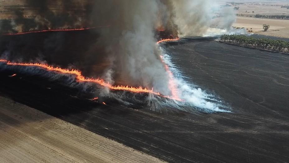 A controlled burn. Photo: Brett Cirulis