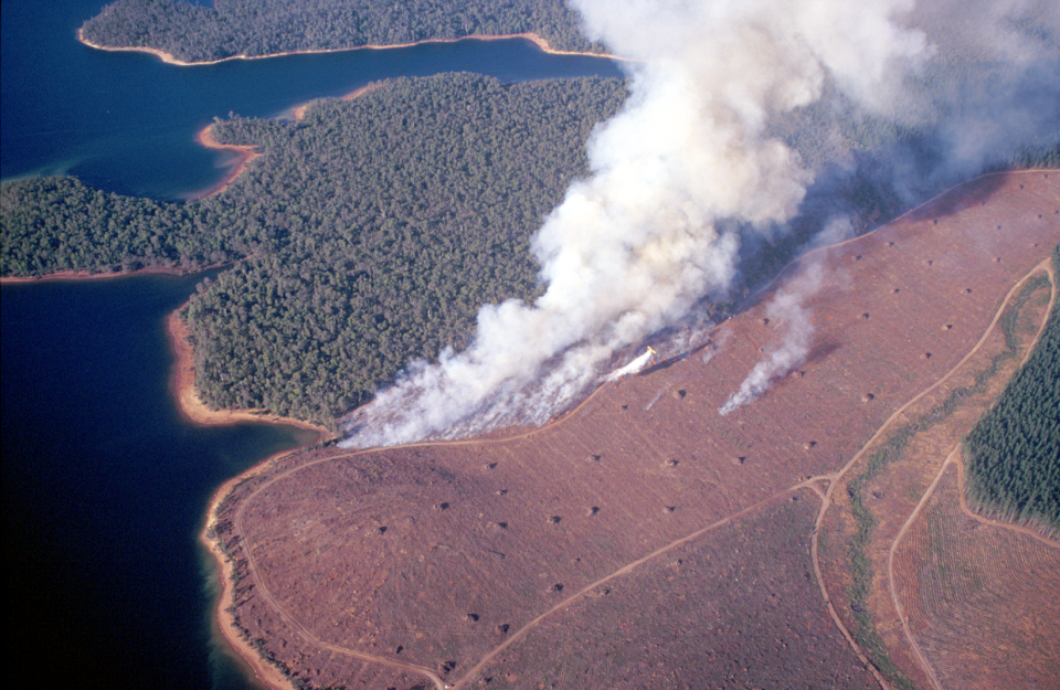 This study is looking at the effects of fire on catchment hydrology.