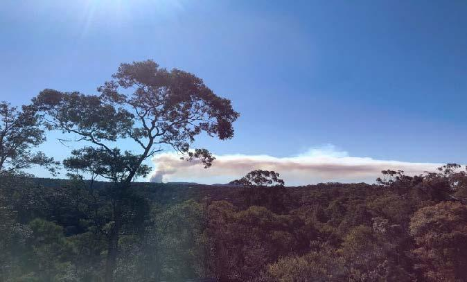 Prescribed burn at Bowen Mountain in July 2019. Photo: Hamish Clarke