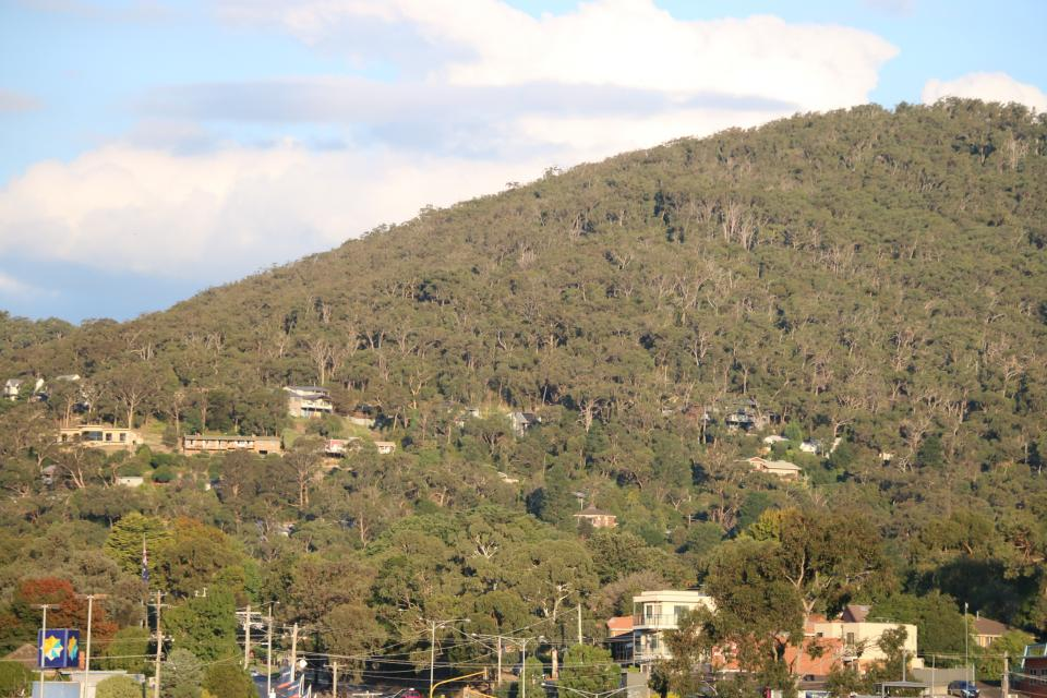 Urban-forest interface in Melbourne's Eastern suburbs.