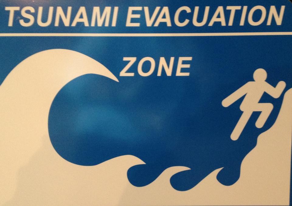 Tsunami evacuation zone sign.