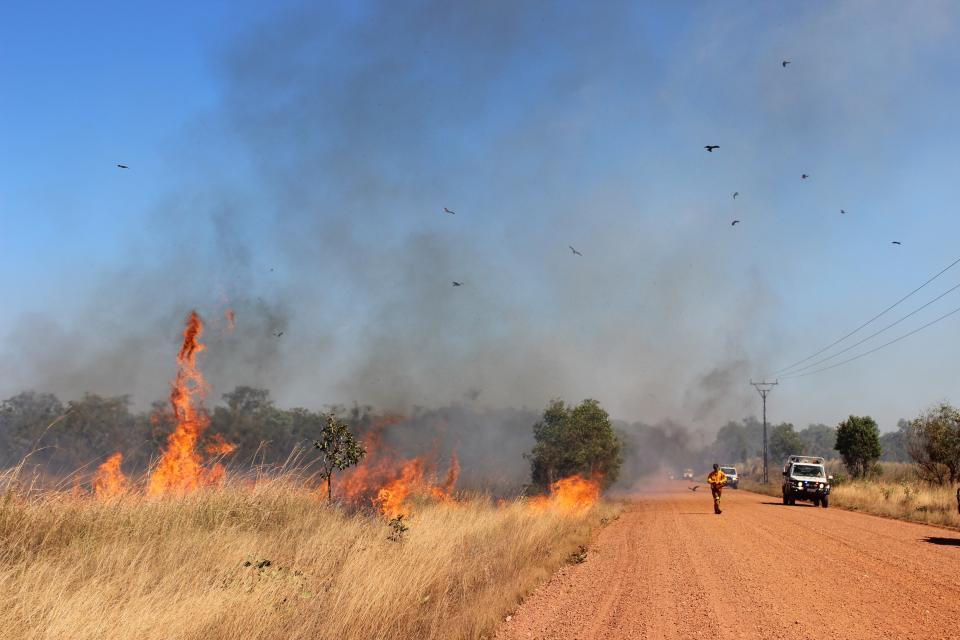 Savanna grasslands fire. Photo credit: Tina Holt, Bushfires NT.