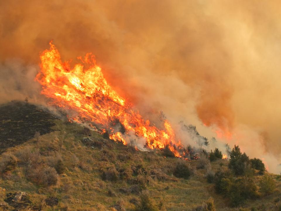 Fire in the landscape. Photo: Fire and Emergency NZ.