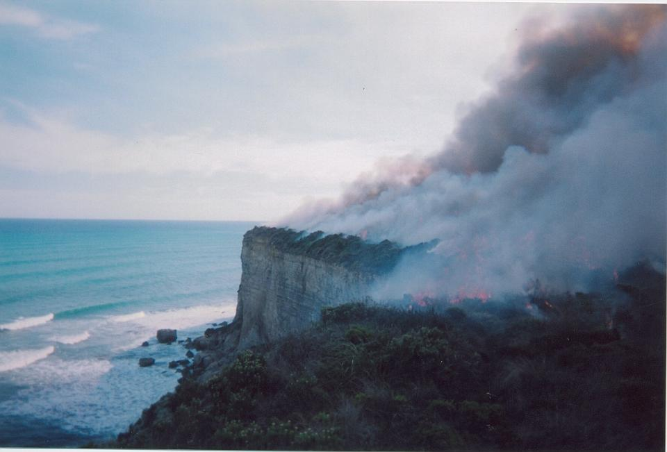 Port Campbell environmental burn. Photo: Brett Hardy