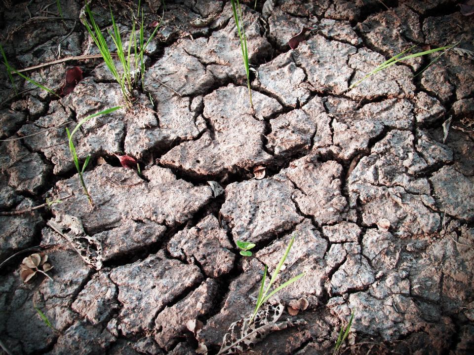 Dry Earth. Photo: pxhere (https://pxhere.com/en/photo/561747)