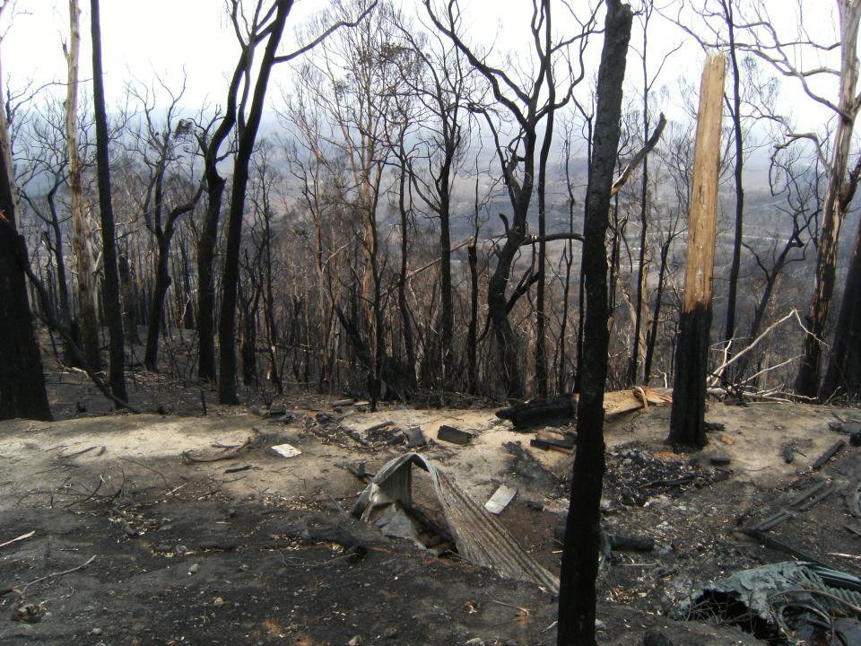 2009 Victoria Fires Kinglake. Photo: BNHCRC