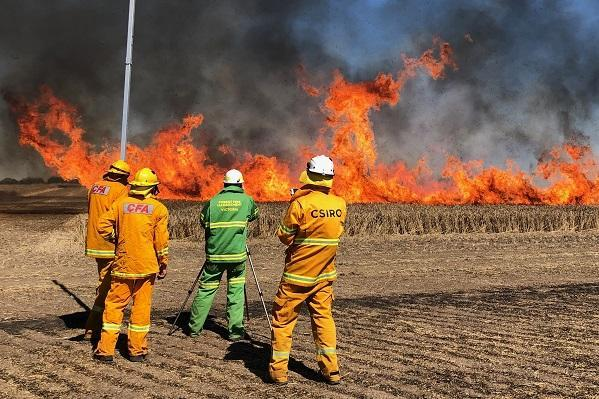 CFA and CSIRO burning croplands as part of a research project to look at how fire behaves. Photo: CFA