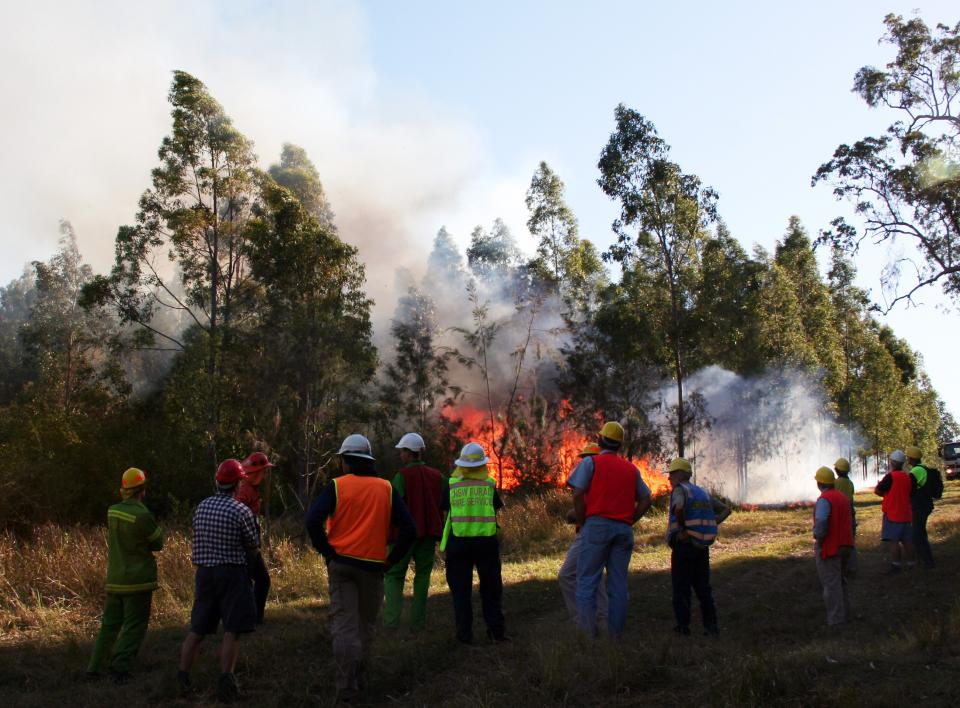 Prescribed burning research