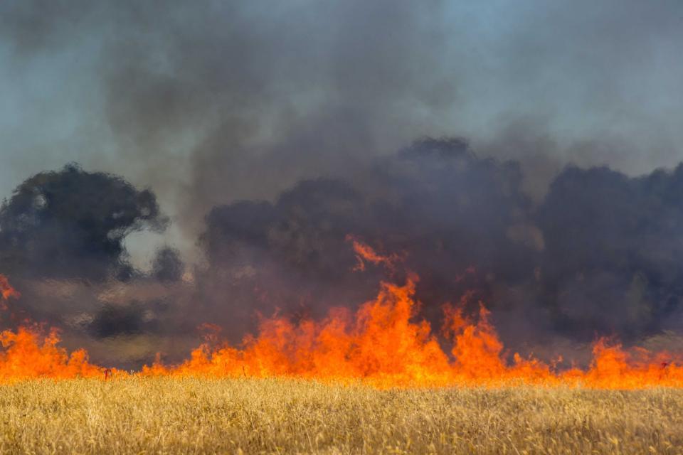 Fire spread. Photo: CFA Communities and Communication
