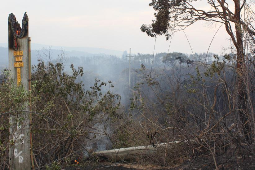 Ruttleys Road fire 2013. Photo: Ausgrid (CC BY 2.0)