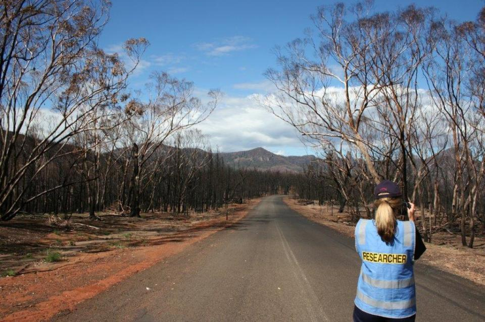 Post-fire research being conducted. Photo: Bushfire and Natural Hazards CRC