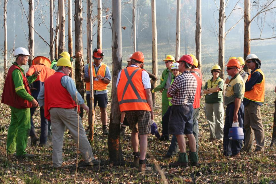 Discussing research on a prescribed burn.