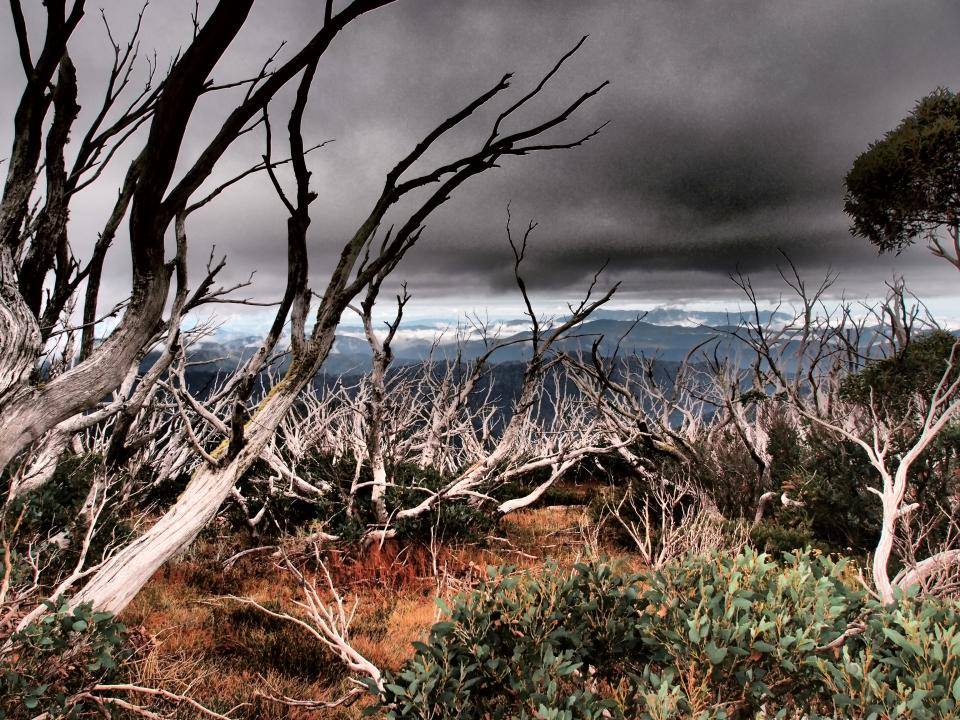 The new national research centre for disaster resilience and disaster risk reduction is seeking partners to sign-up, contribute to and influence the next decade of natural hazards research in Australia. Photo: Bushfire and Natural Hazards CRC.