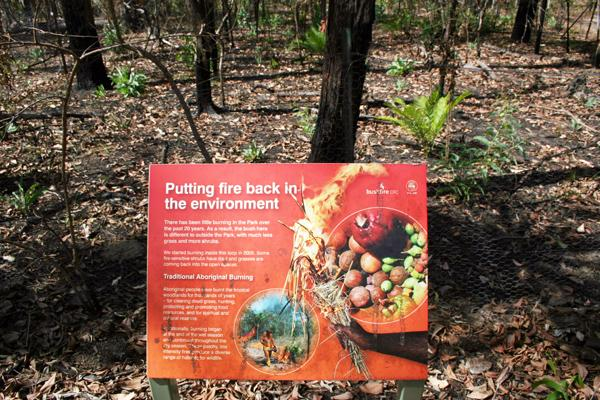 Fire knowledge in northern Australia