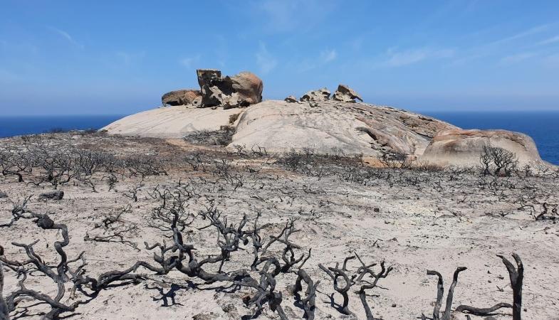Remarkable Rocks at Flinders Chase National Park, Kangaroo Island, January 2020. Photo: Department for Environment and Water SA