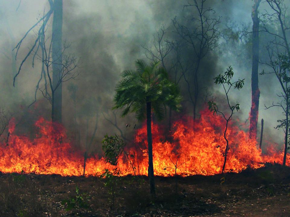 Victorian historical fire weather data will be analysed to produce the dataset.