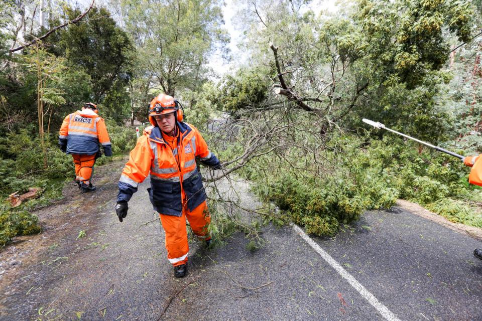 SA SES volunteers clearing up after a storm. Photo SA State Emergency Service