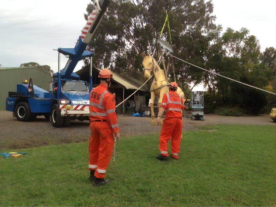 NSW SES large animal rescue training at Agnes Banks. Photo: Penny Burns