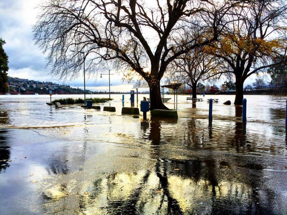 Royal Park, Launceston, during the June 2016 flood. Photo Flickr upsticksngo_crew