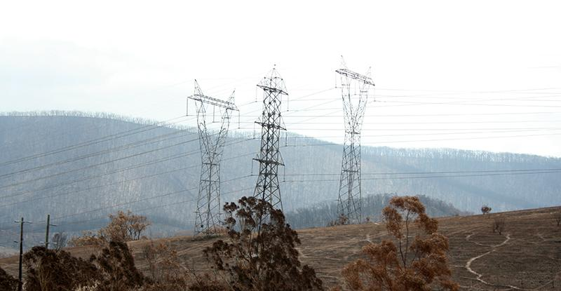 Powerlines impacted by Black Saturday, Strathewen. Photo: David Bruce, Bushfire and Natural Hazards CRC