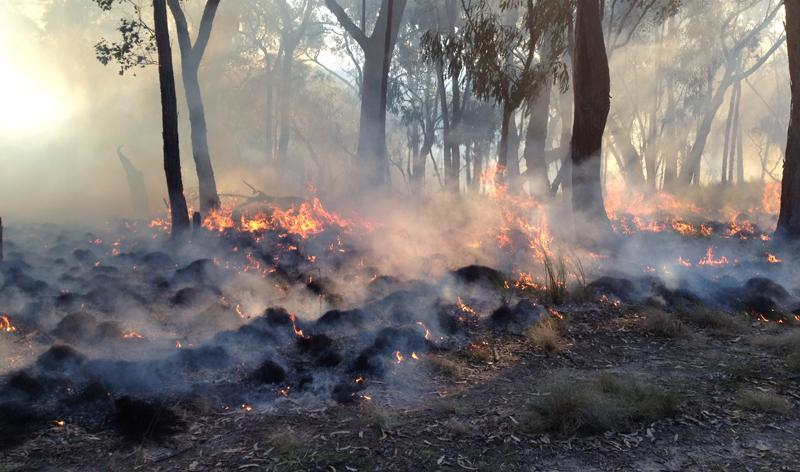 This research is developing better ways to use satellites to map fires. Photo: Karin Reinke