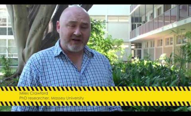How tsunami risk informs natural hazard management
