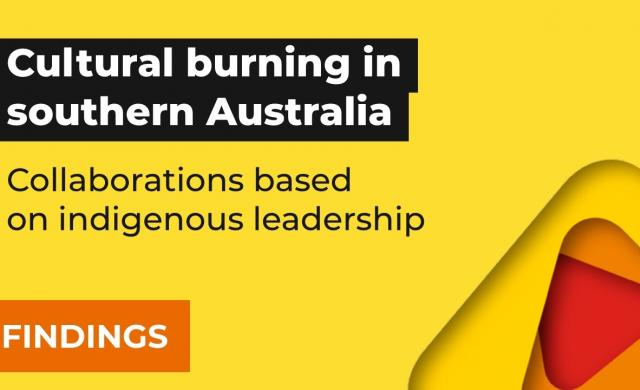 Cultural burning in southern Australia: collaborations based on Indigenous leadership