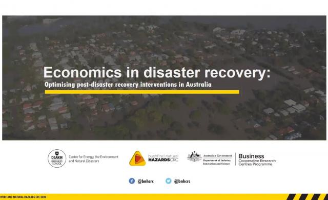 Economics in disaster recovery - webinar